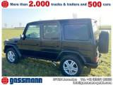 Mercedes-Benz G 350 Bluetec (lang)