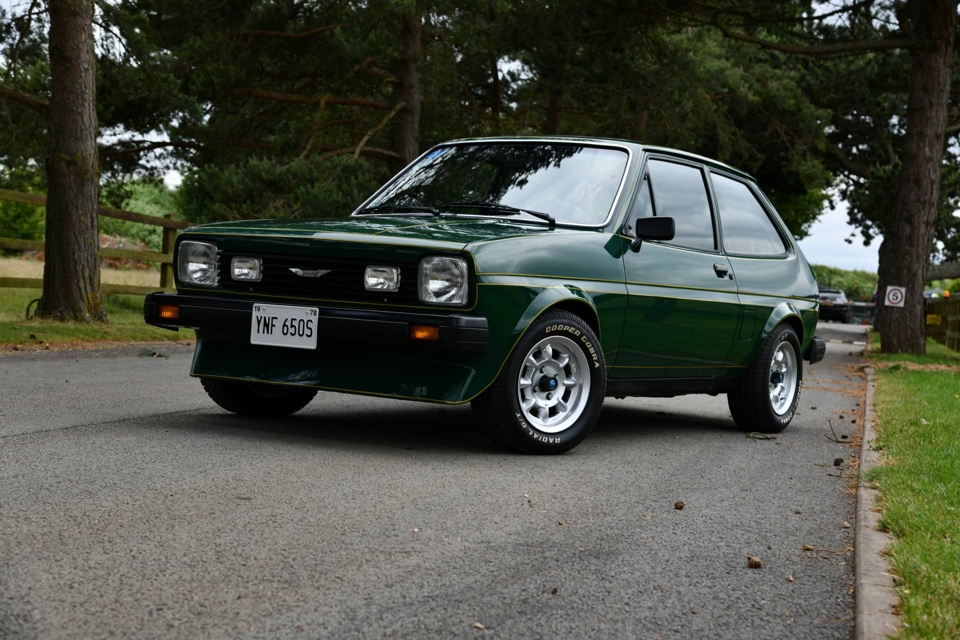 Ford Fiesta Healey