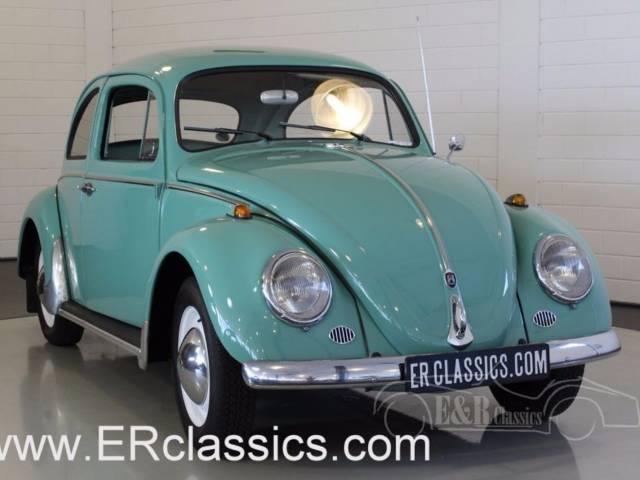 Volkswagen Coccinelle 1200 Standard